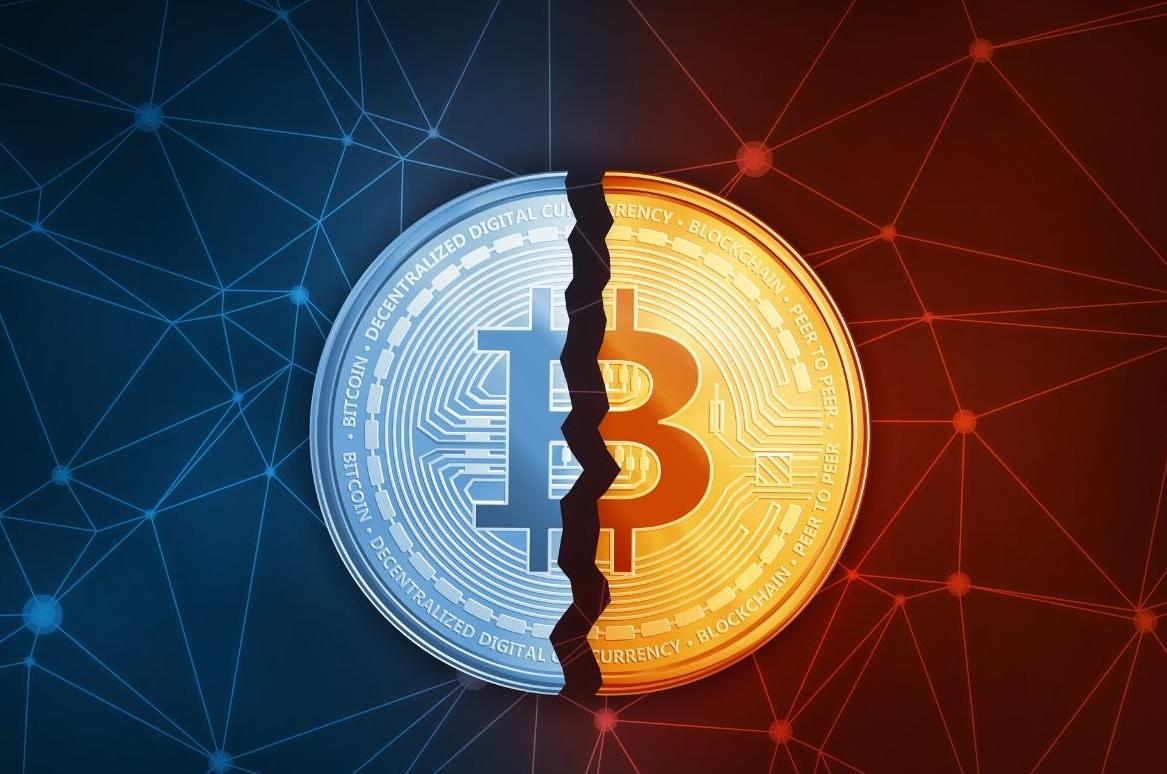 Guida alla metà del Bitcoin | Cryptopolitan
